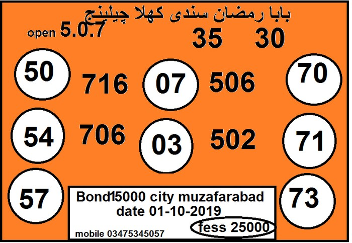 15000 Prize bond Guess Papers 2019 (11)