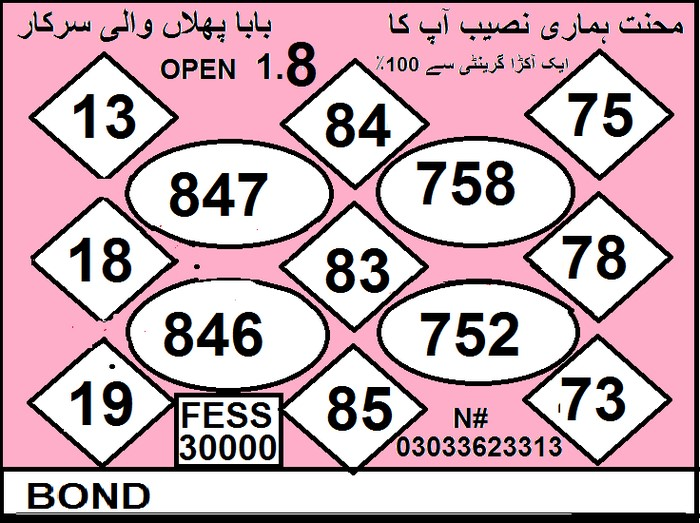15000 Prize bond Guess Papers 2019 (9)