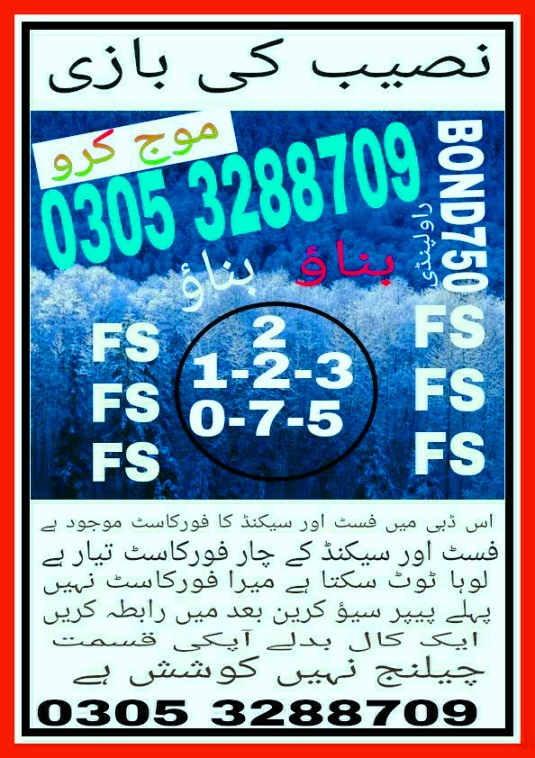 750 Prize bond Guess papers Rawalpindi 2018 (4)